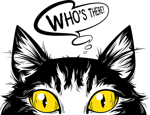 black cat with yellow eyes hiding
