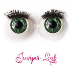 Juniper Leaf - Premium Classic Infinity™ Blinking Doll Eyes