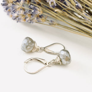 TN Labradorite Drop Earrings