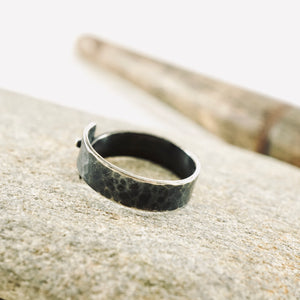 Carpe Diem - Ring 02