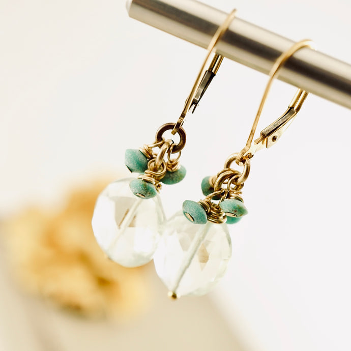 TN Aqua Turquoise Earrings
