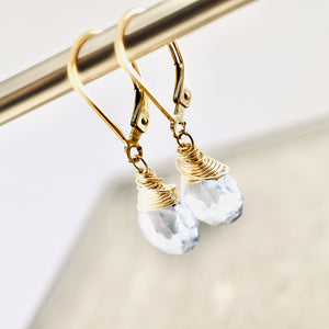 TN Petite Blue Topaz Earrings