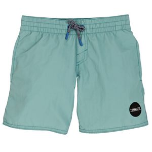 PB Vert Shorts Dusty Turquoise - Stoked Boardshop