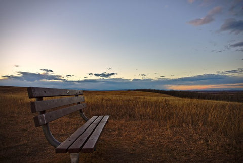 Bench in a field at sunset