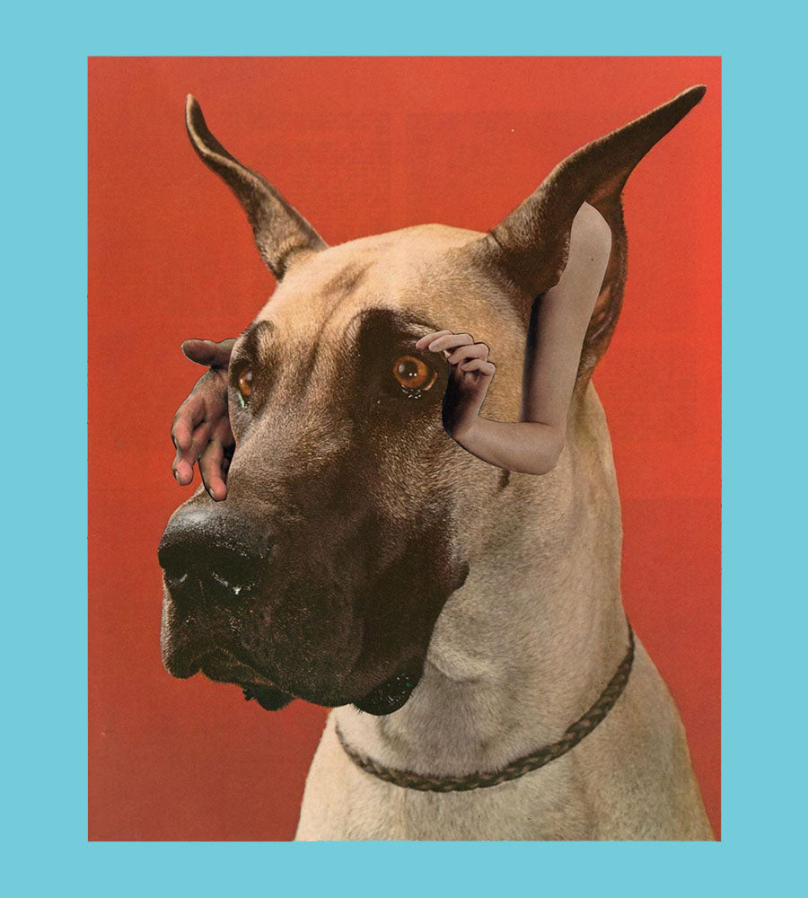 Heavy Hymns Dog Collage Print