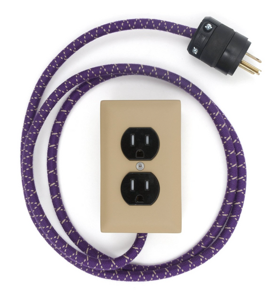 Conway Electric 8 ft. USB-C Extension Cords