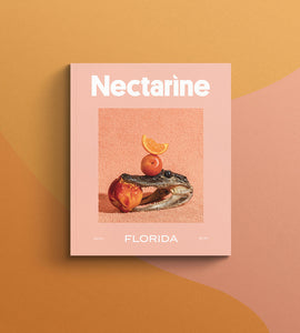 Nectarine Magazine Issue 01: Florida