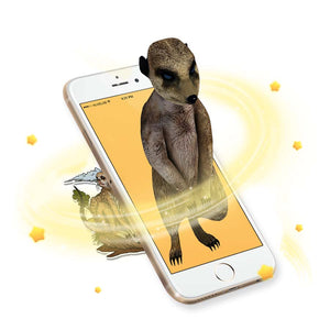 augmented reality meerkat sticker comes to life