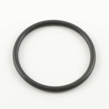 106556 Teflon O-Ring, at top of cylinder