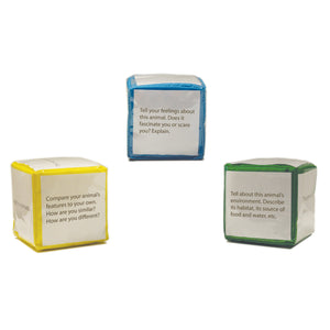 Differentiated Instruction Cubes 3 Pk