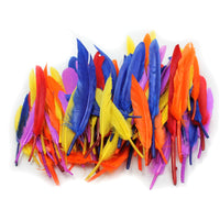 (6 Pk) Duck Quills Feathers 14g Per Bag