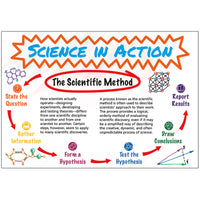 Science In Action Time Link Bb Set