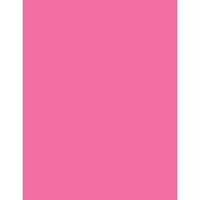 (2 Pk) Array Card Stock Brights Hot Pink 100 Sht Per Pk
