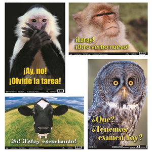 (3 St) Spanish Fun Photo Posters Set 5 4 Posters Per Set
