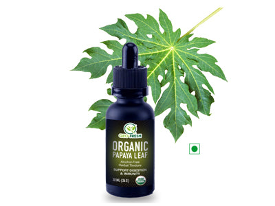 Organic Papaya Leaf Tincture (Geo-Fresh)