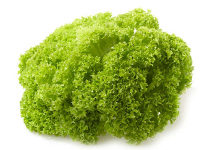 Buy Hydroponically Grown Green Lollo Rosso Lettuce Online At Orgpick