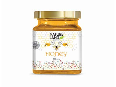 Organic Honey (Natures-Land)