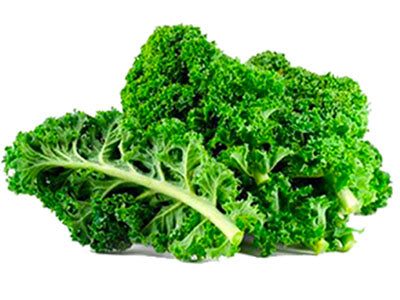 Buy Hydroponically Grown Kale Online At Orgpick