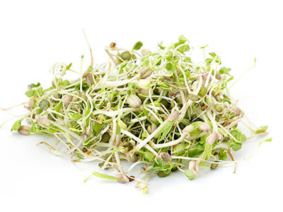 Organic Beans Sprout Mix Green in Colour Orgpick.com