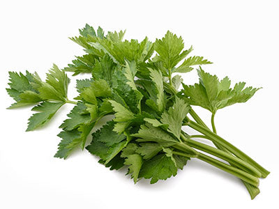 Organic Parsley Flat