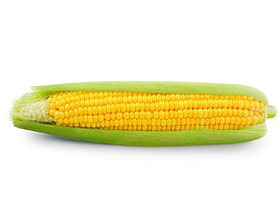 Organic Sweet Corn (American) whole