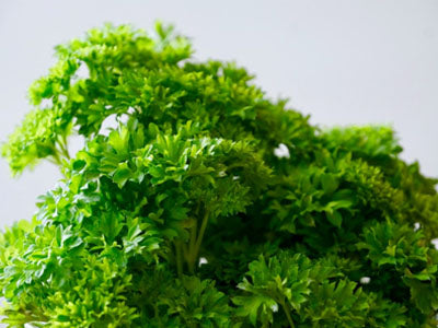 Buy Hydroponically Grown Parsley Online At Orgpick