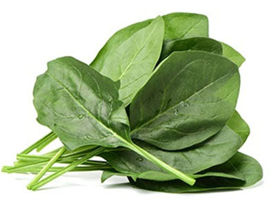 Spinach (Hydroponically Grown)