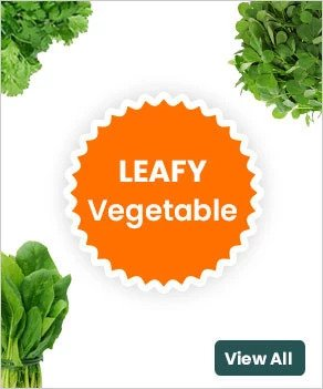 Leafy green vegetables give a scope of health advantages as a feature of a good diet. Eating greens along with a good source of fat can enable your body to absorb the fat-soluble nutrients in the vegetable. Organic leafy vegetables are high in antioxidants, fiber, minerals and so on.