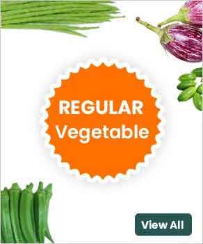 Extensively available in the market of Pune, vegetables like ladyfinger, bharta brinjals, tendli, drumsticks, capsicum green. They are mostly used in dishes and make into meals for their unique taste. Most of the vegetables are naturally low in fat and calories. Vegetables provide nutrients essential for the health and maintenance of your body.