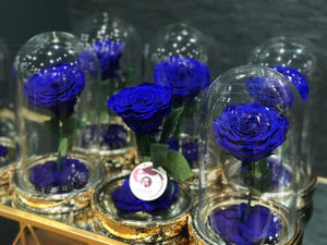 Load image into Gallery viewer, INFINITY ROSE BLUE