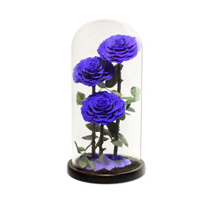 Load image into Gallery viewer, Forever Rose Blue XL