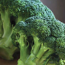Load image into Gallery viewer, Broccoli Seeds - Organic, Non-GMO