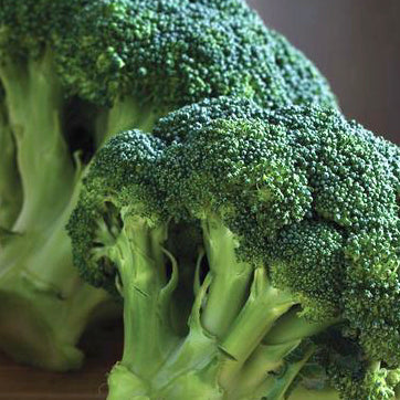 Broccoli Seeds - Organic, Non-GMO