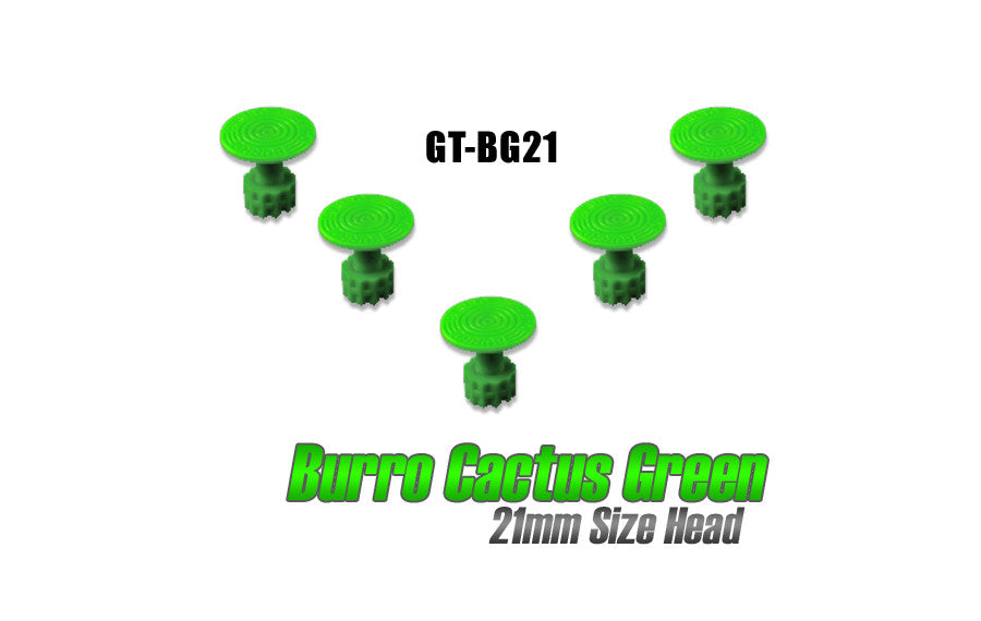 Burro Cactus Green 21mm