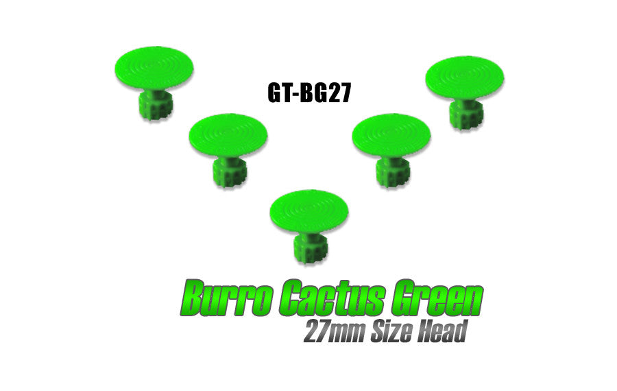 Burro Cactus Green 27mm