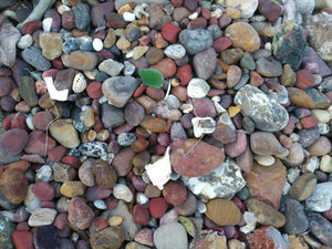 Quick Lesson on Central Oregon Coast Beach Finds (video)