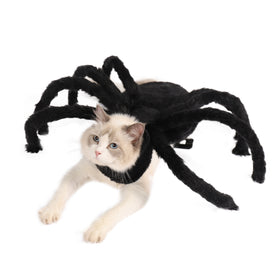 Pet Spider Costume