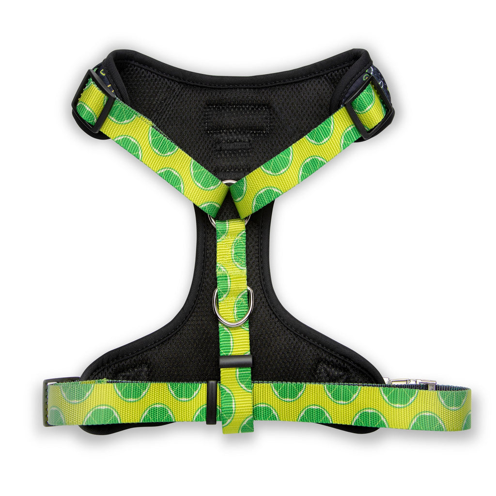 Retro Taco Tuesday Harness