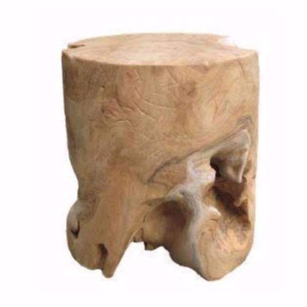 Root Stool