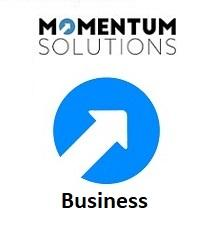MIS 1 Small Business Consultancy - MOMENTUM Tech Solutions