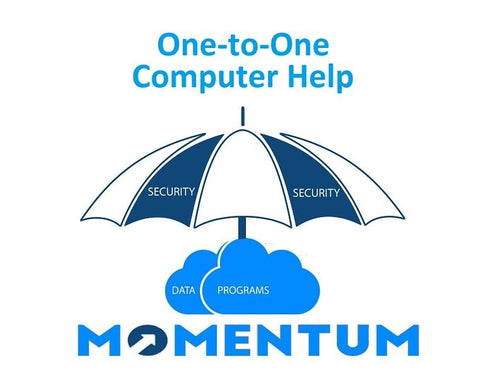 MIS Best Cyber VIP Layer 1 Bundle Security per Year - MOMENTUM Tech Solutions