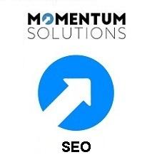 MIS SEO Consultancy - MOMENTUM Tech Solutions