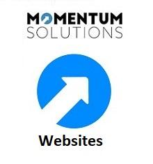 MIS Website Consultancy - MOMENTUM Tech Solutions