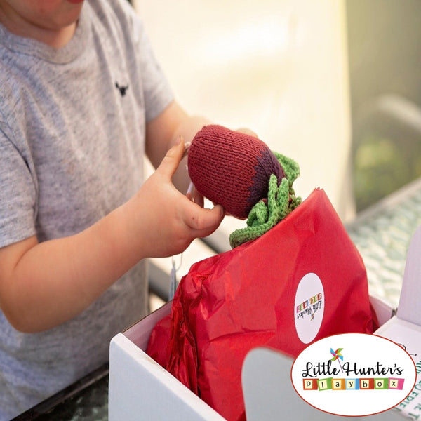 Fair Trade Fruit And Veg Play Box Educational Toys