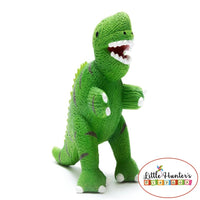 My First Rubber Dinosaurs Green T-Rex Dinosaurs