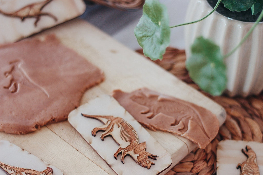 Dinosaur Fossil Stamps-PRE ORDER