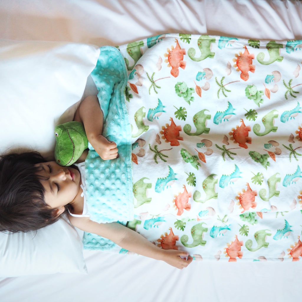 Premium Minky Blanket - Dinosaurs (2 Sizes Available)