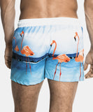 Flamingo Sport Boardshorts