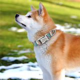Customized Printed Nylon Dog Collar Personalzied Free Engraved Puppy ID Name