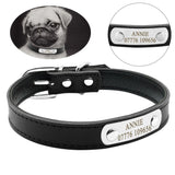Personalized Leather Padded Custom Dog Cat Collar with Engraved Nameplate ID Tag